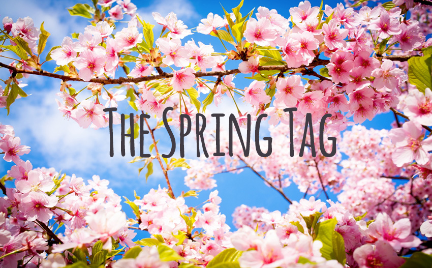 TheSpringtagpicture
