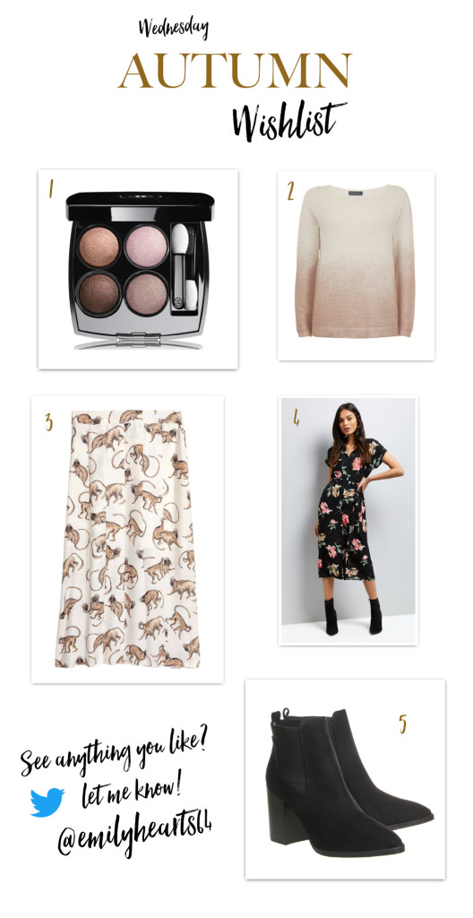 Wednesday Autumn Wishlist